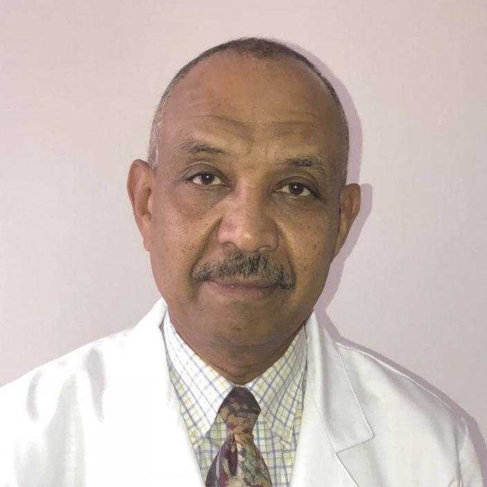 Abdulhafiz Amin Mohamed Ahmed